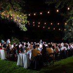 umlauf wedding